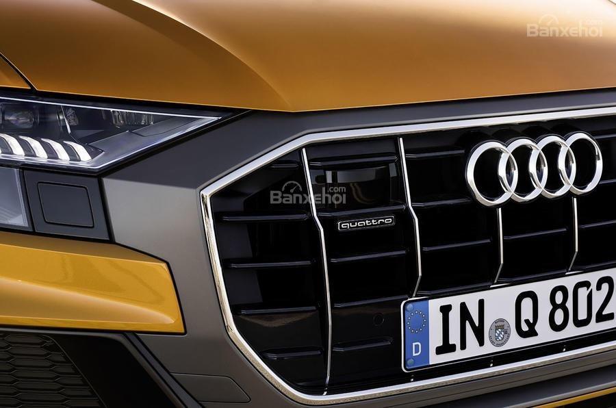 Đánh giá xe Audi Q8 2019 - đầu - 3
