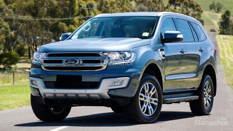 Cần bán xe Ford Everest 2.0L Bi Turbo đời 2018, màu xám (ghi), nhập khẩu-2