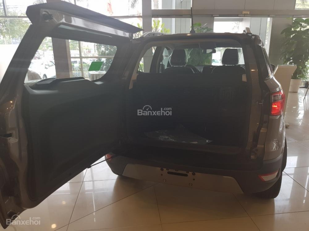 Hot Ford Ecosport 2019 đủ màu chỉ với từ 100 triệu đồng, hỗ trợ trả góp lên tới 90% giá trị xe - LH 0967664648 (5)