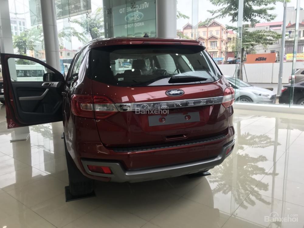 Cần bán Ford Everest Trend 2.0 AT sản xuất năm 2019, màu đỏ, nhập khẩu nguyên chiếc (3)