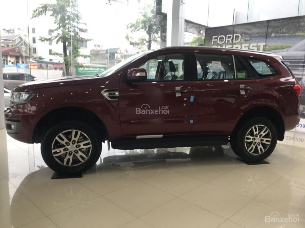 Cần bán Ford Everest Trend 2.0 AT sản xuất năm 2019, màu đỏ, nhập khẩu nguyên chiếc (4)