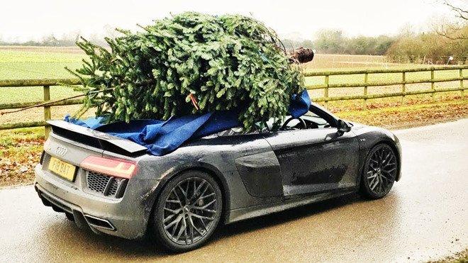 Tài xế chở cây thông Noel gây nguy hiểm