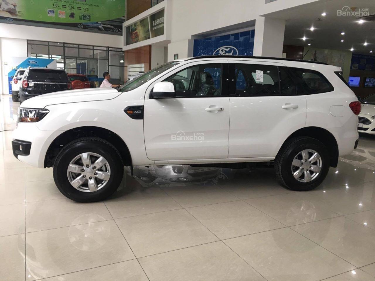 Bán Ford Everest Ambiente đời 2018, nhập khẩu, giao xe liền-3