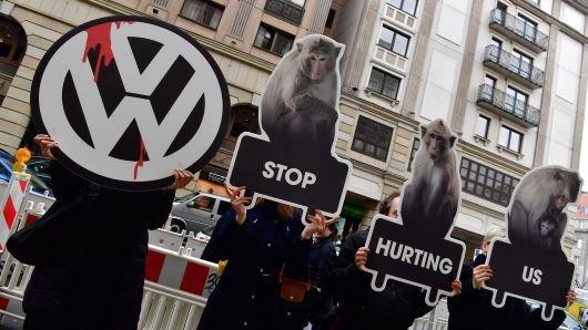 Volkswagen thử nghiệm khí thải trên động vật và người