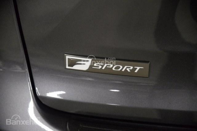 Đánh giá xe Lexus NX 300 2019 bản Mỹ - đuôi - 2