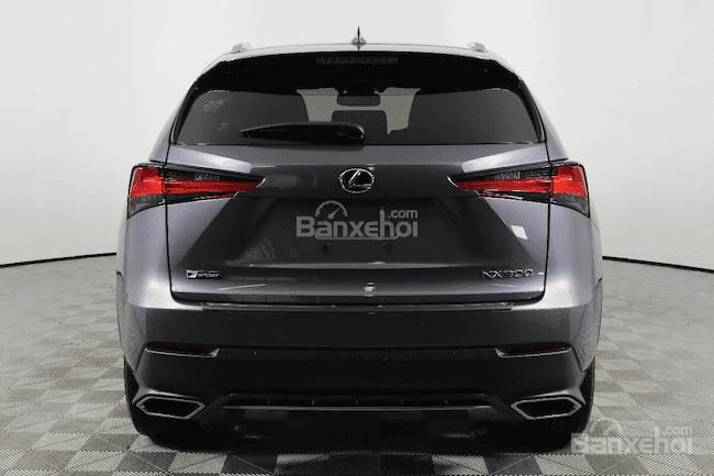 Đánh giá xe Lexus NX 300 2019 bản Mỹ - đuôi - 1