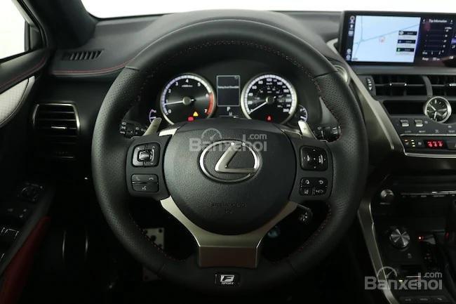 Đánh giá xe Lexus NX 300 2019 bản Mỹ - giải trí - 2