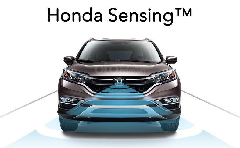 Hệ thống an toàn Honda Sensing trang bị cho Honda Passport 2019