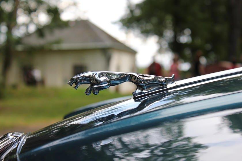Khám phá 10 logo trên mui xe ấn tượng nhất toàn cầu - Jaguar Leaper.