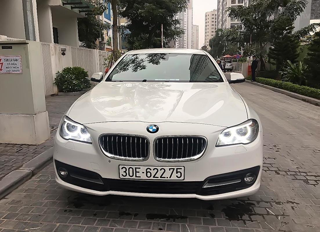Cần bán BMW 5 Series 520i đời 2016, màu trắng, nhập khẩu nguyên chiếc-0