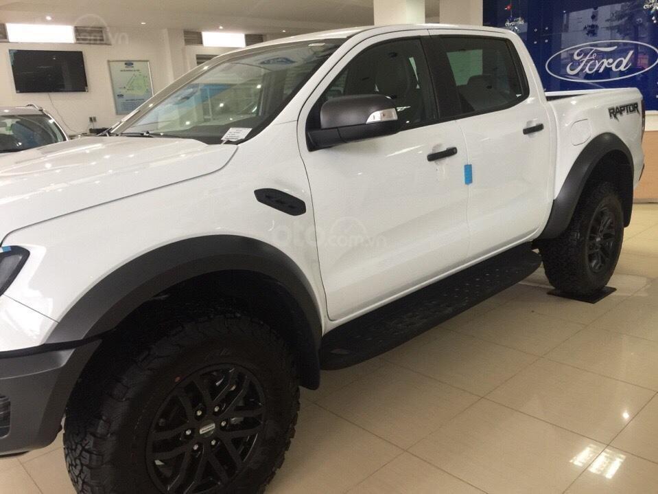 Bán xe Ford Ranger 2.0 Biturbo Raptor đời 2019, xe nhập đủ màu giao ngay, giá tốt nhất, LH 0979 572 297-2