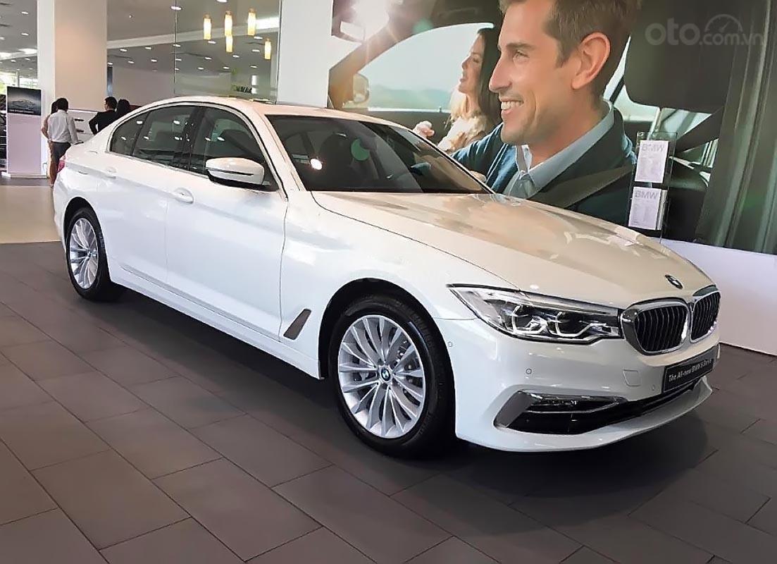 Cần bán xe BMW 5 Series 530i đời 2019, màu trắng, nhập khẩu nguyên chiếc-0
