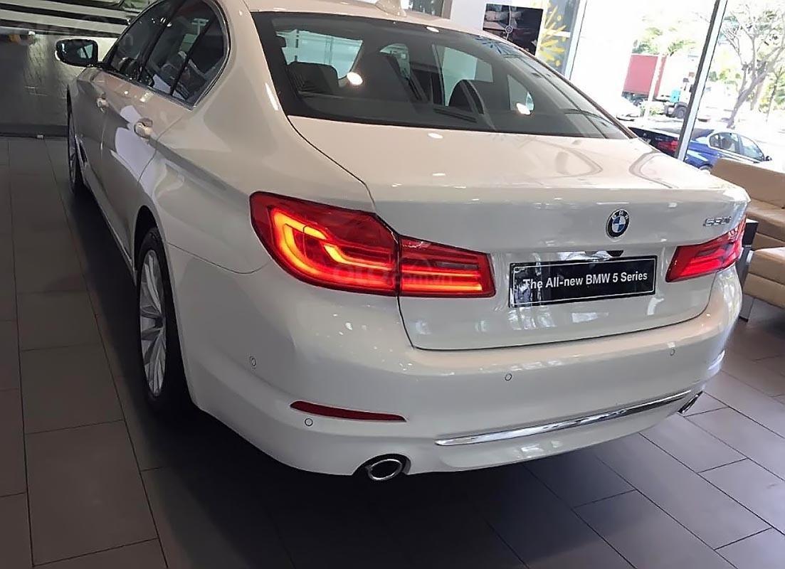 Cần bán xe BMW 5 Series 530i đời 2019, màu trắng, nhập khẩu nguyên chiếc-1