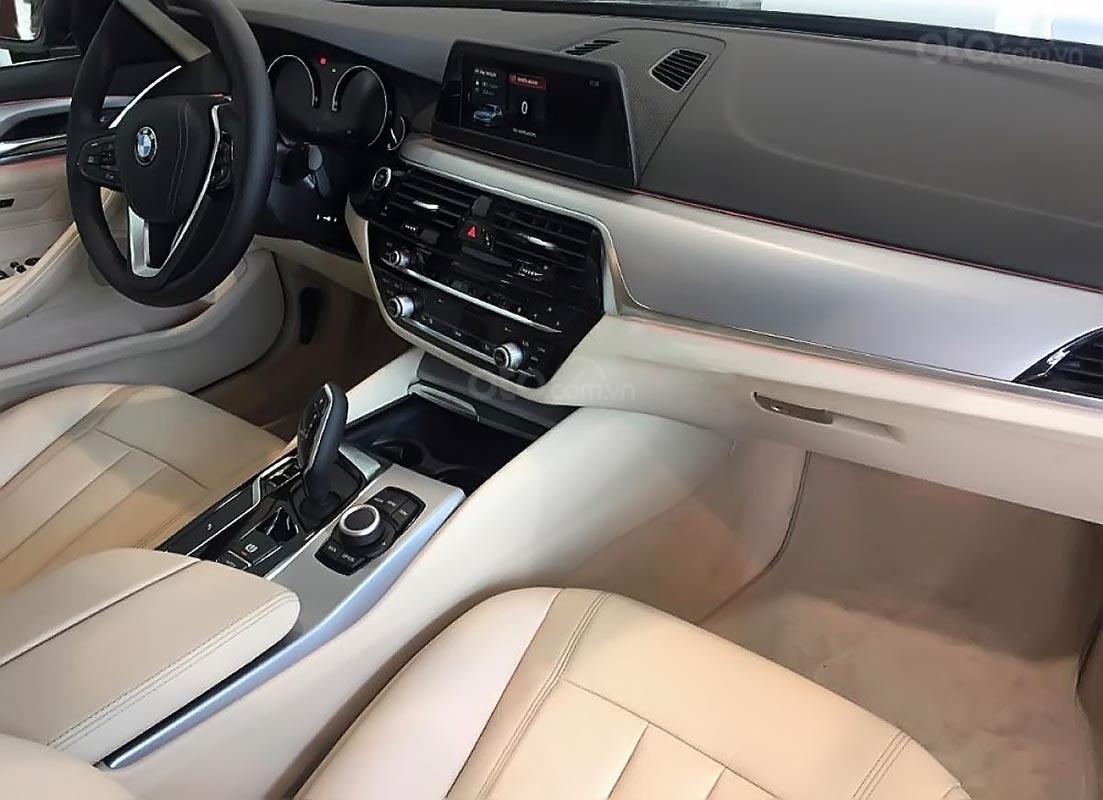 Cần bán BMW 5 Series 520i đời 2019, màu xanh lam, xe nhập-3