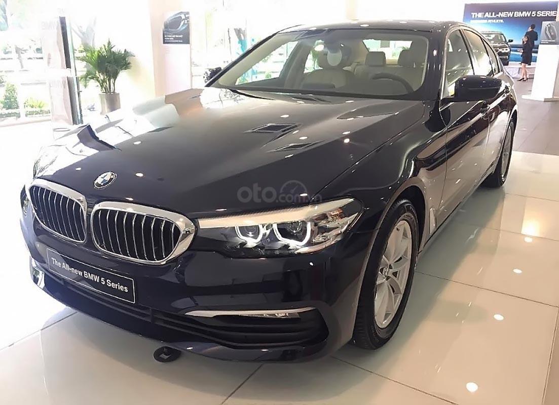 Cần bán BMW 5 Series 520i đời 2019, màu xanh lam, xe nhập-0