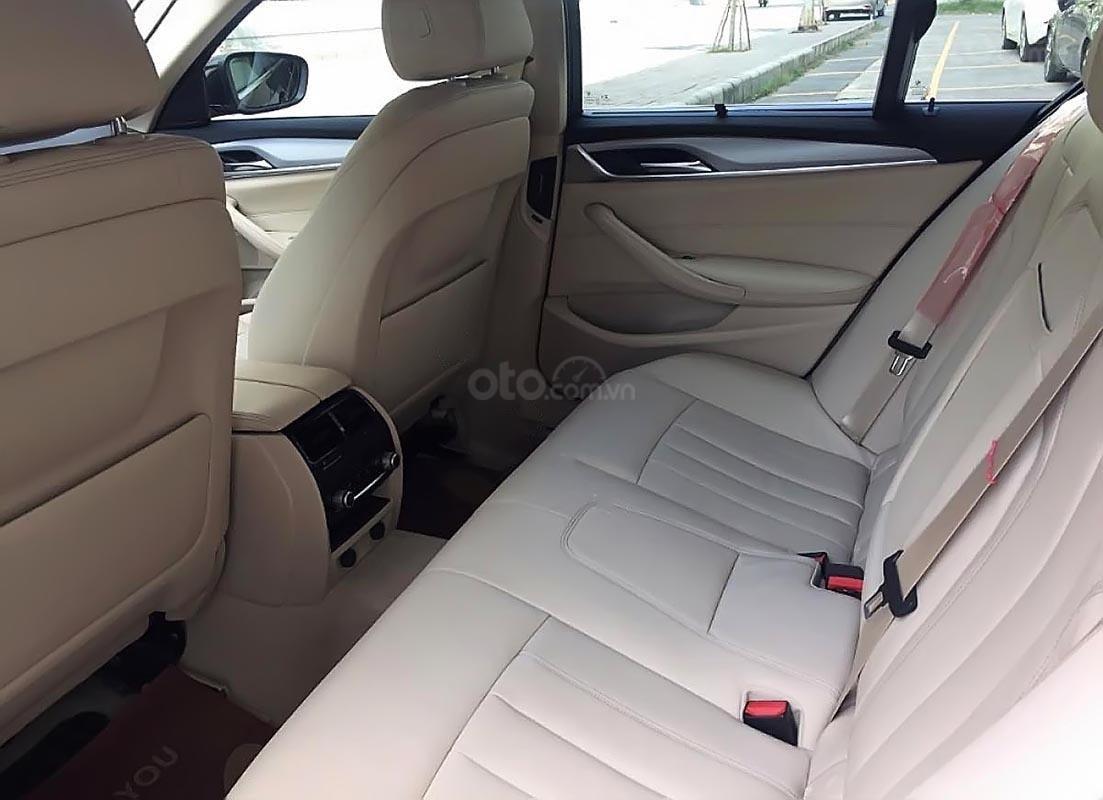 Cần bán xe BMW 5 Series 520i sản xuất 2019, nhập khẩu-3