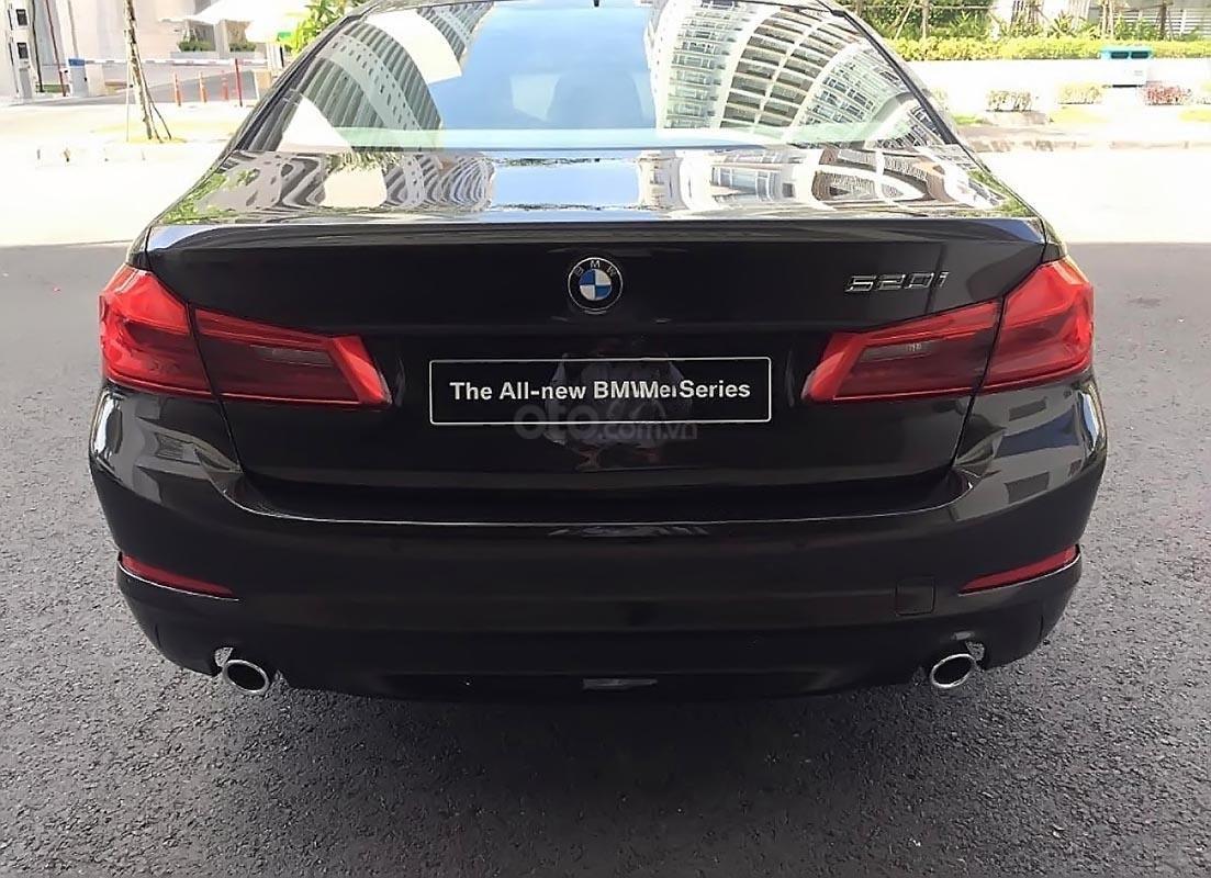 Cần bán xe BMW 5 Series 520i sản xuất 2019, nhập khẩu-4
