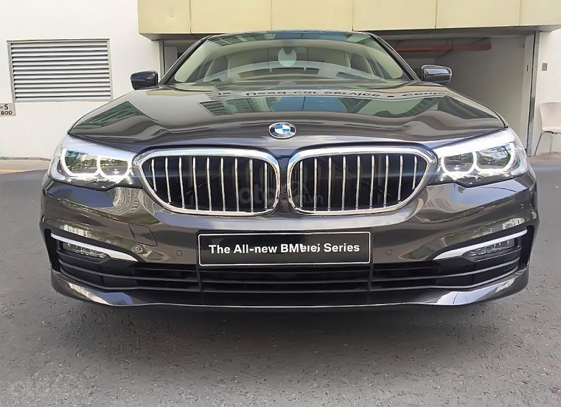Cần bán xe BMW 5 Series 520i sản xuất 2019, nhập khẩu-0