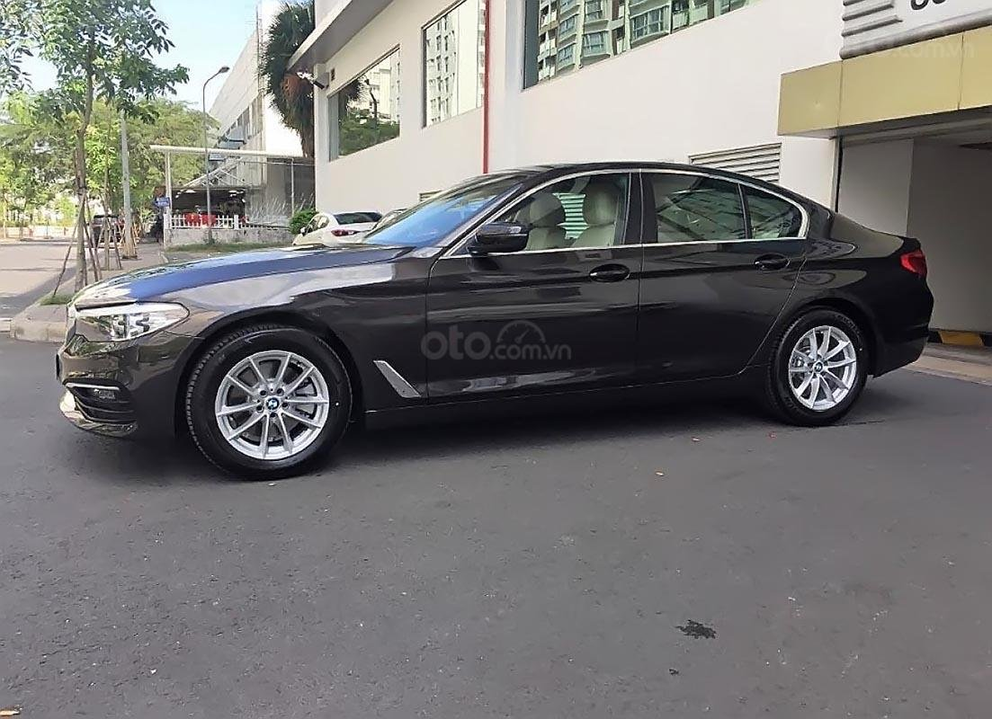 Cần bán xe BMW 5 Series 520i sản xuất 2019, nhập khẩu-2