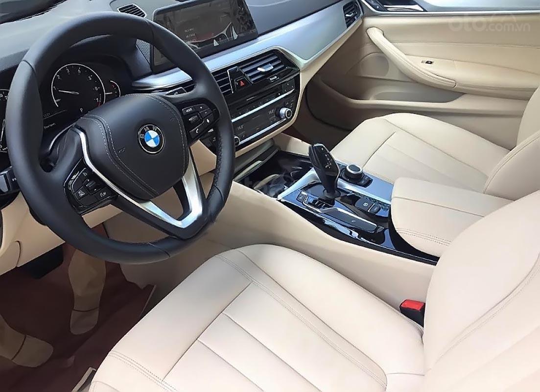 Cần bán xe BMW 5 Series 520i sản xuất 2019, nhập khẩu-1