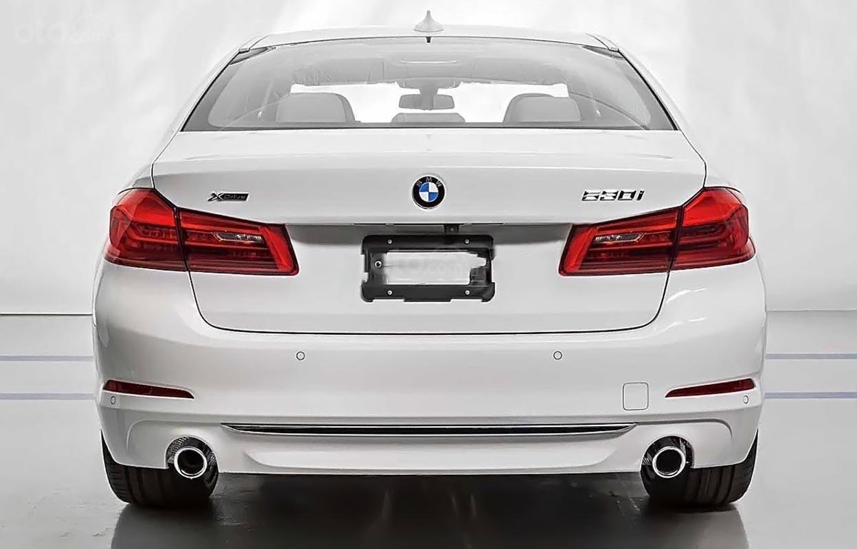 Cần bán BMW 530i Luxury Line 2.0 năm 2019, màu trắng, nhập khẩu nguyên chiếc-1
