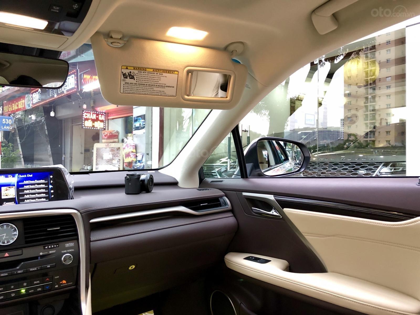 Bán Lexus RX 350 Sx 2019 mới 100%, màu vàng, nhập khẩu Mỹ - LH: 0982.84.2838 (20)