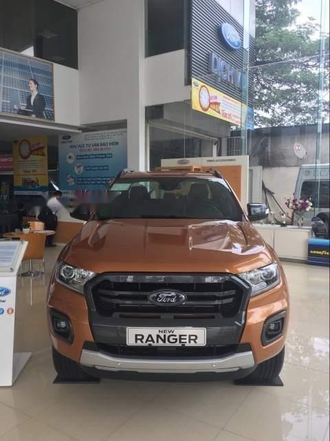 Bán Ford Ranger năm sản xuất 2018, màu nâu, nhập khẩu-0