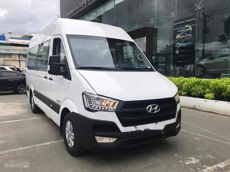 Bán Hyundai Solati sản xuất 2019, màu trắng -1