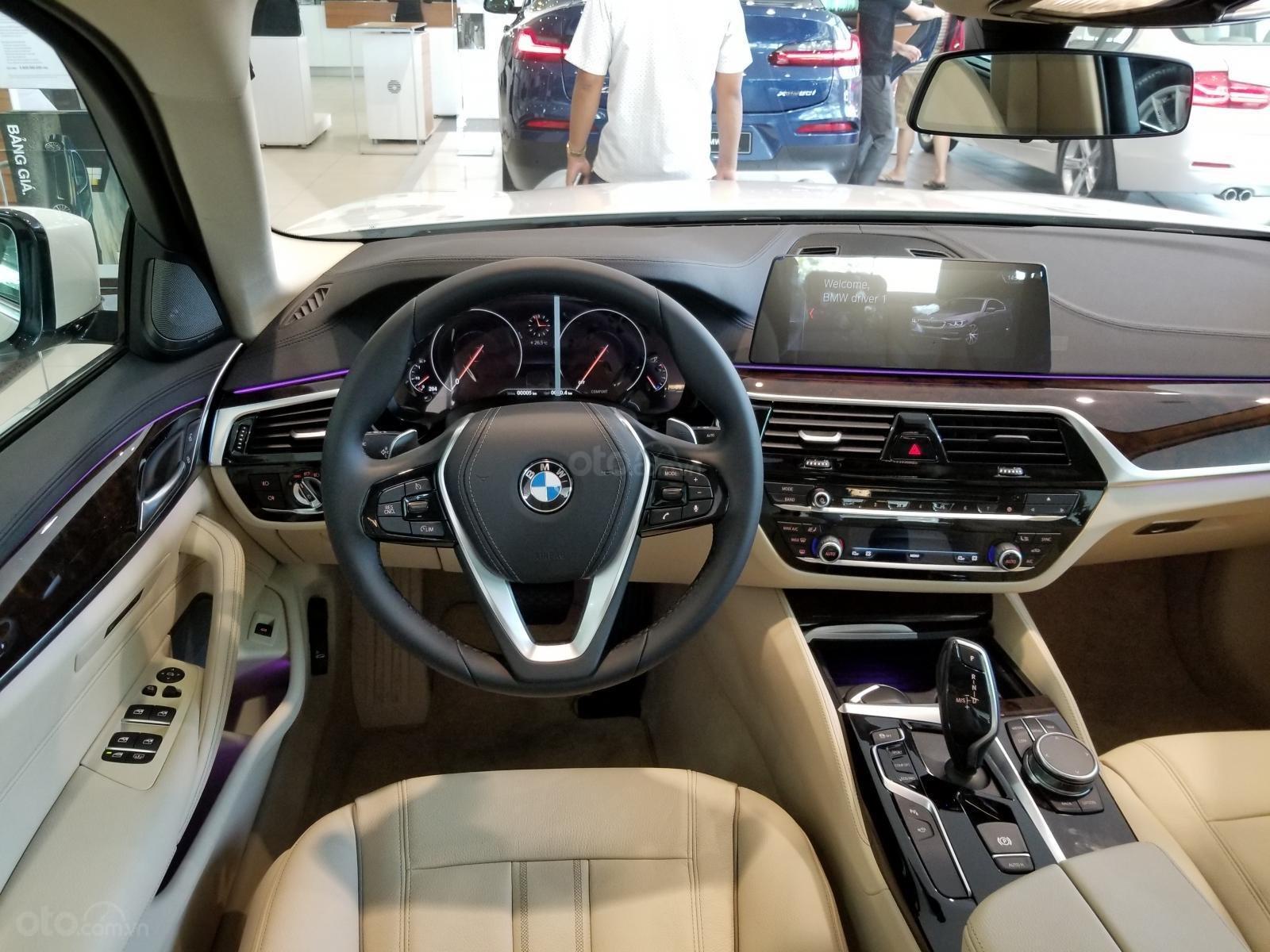 Bán ô tô BMW 5 Series đời 2019, màu trắng, nhập khẩu nguyên chiếc-2