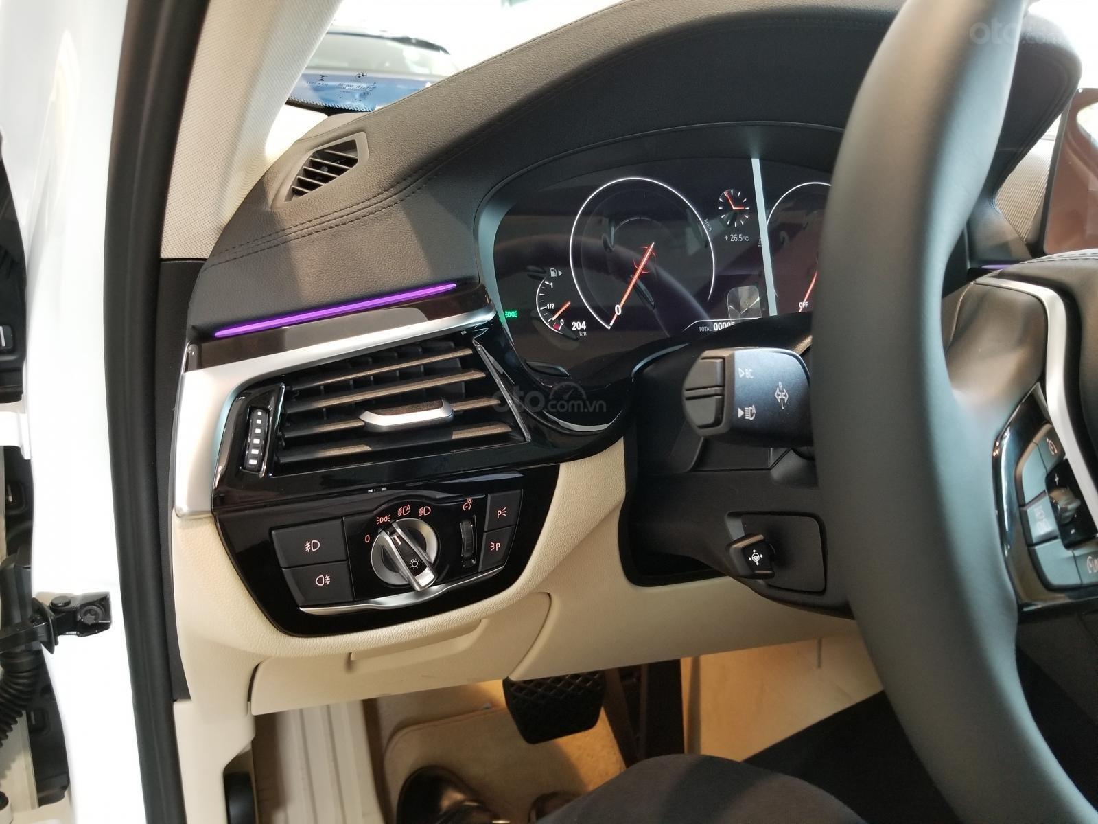 Bán ô tô BMW 5 Series đời 2019, màu trắng, nhập khẩu nguyên chiếc-6
