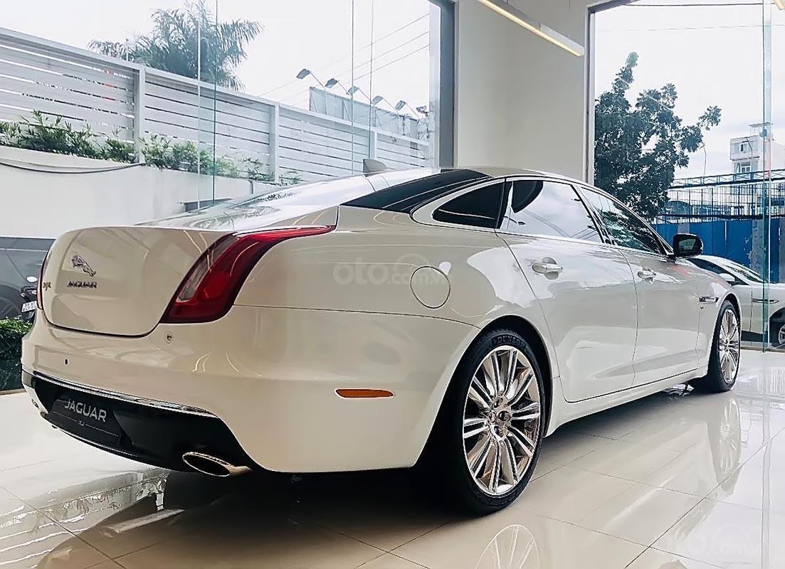 Cần bán Jaguar XJ Porfolio năm 2019, màu trắng, nhập khẩu-1