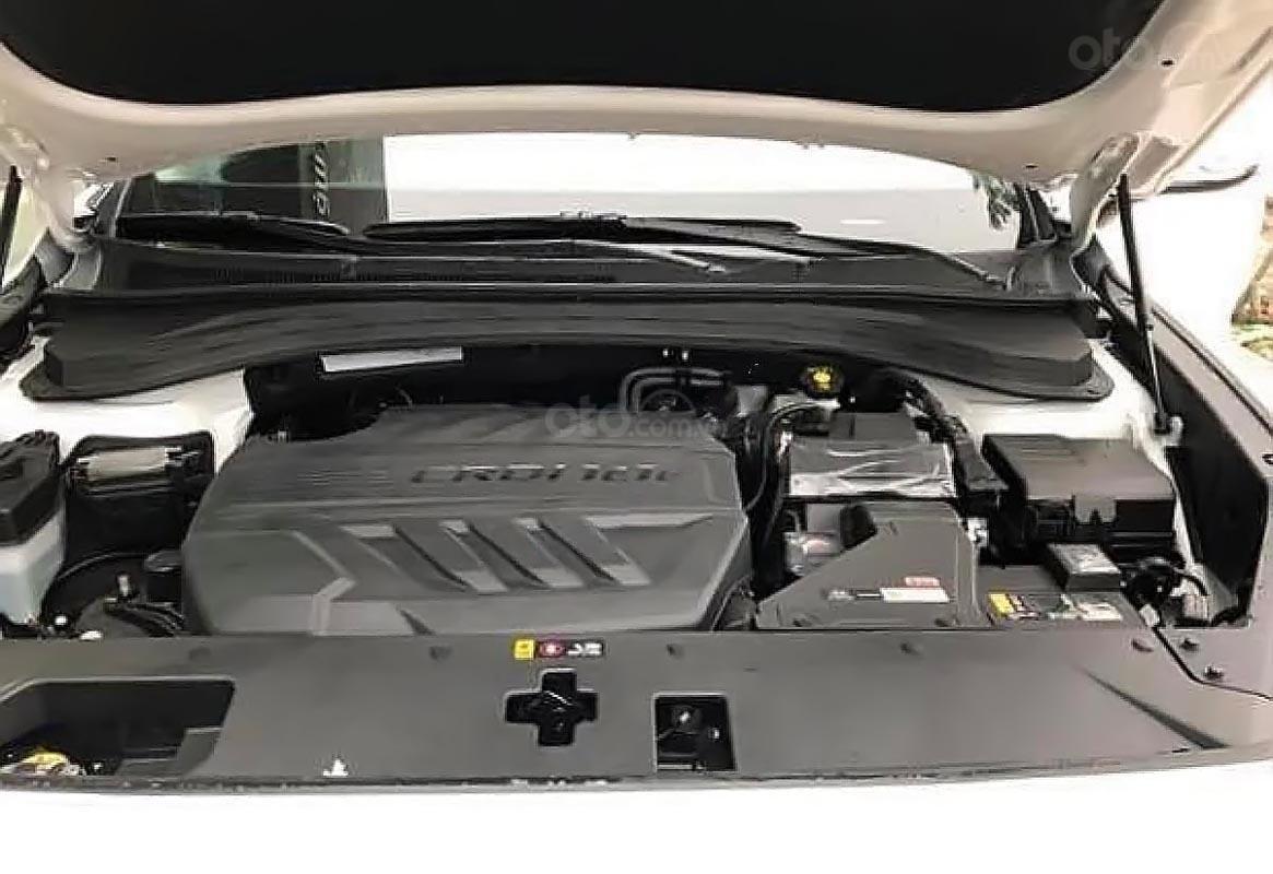 Bán Hyundai Santa Fe 2019 máy dầu-2