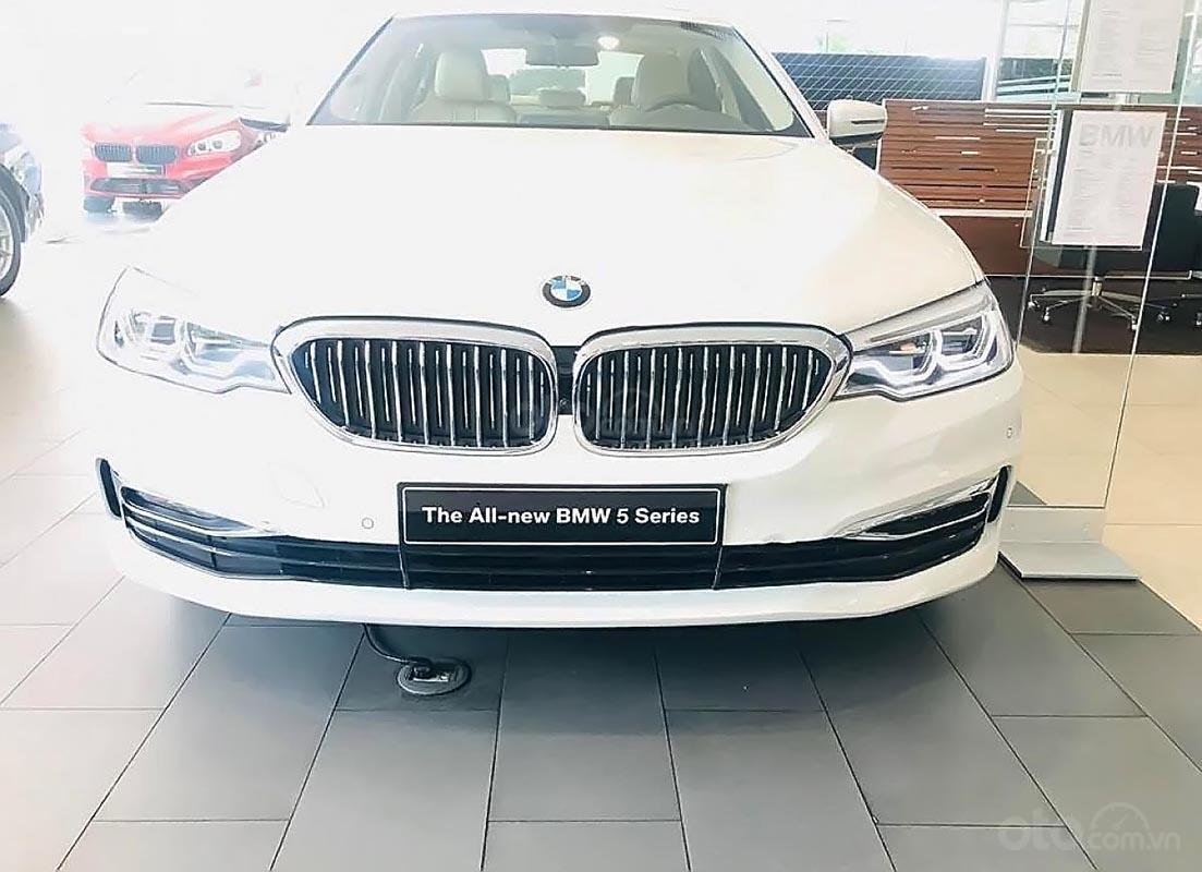 Bán xe BMW 5 Series 530i Luxury Line đời 2018, màu trắng, xe nhập-0