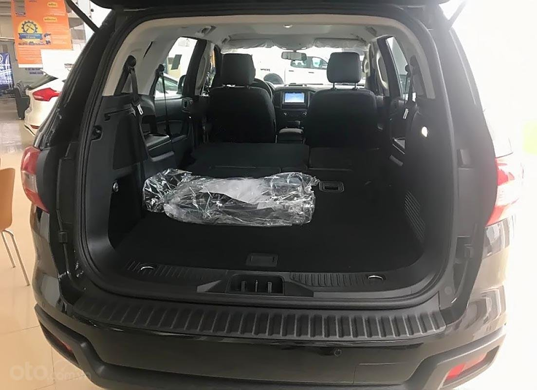 Bán xe Ford Everest Ambiente 2.0 4x2 AT 2019, màu đen, nhập khẩu  (4)