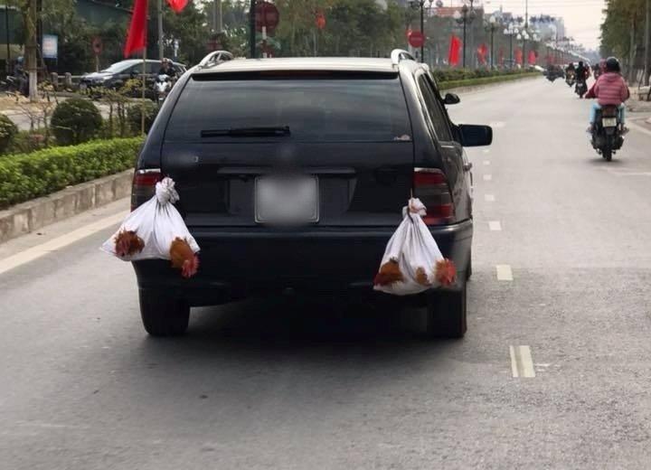 Xe hơi chở cả quê hương 11
