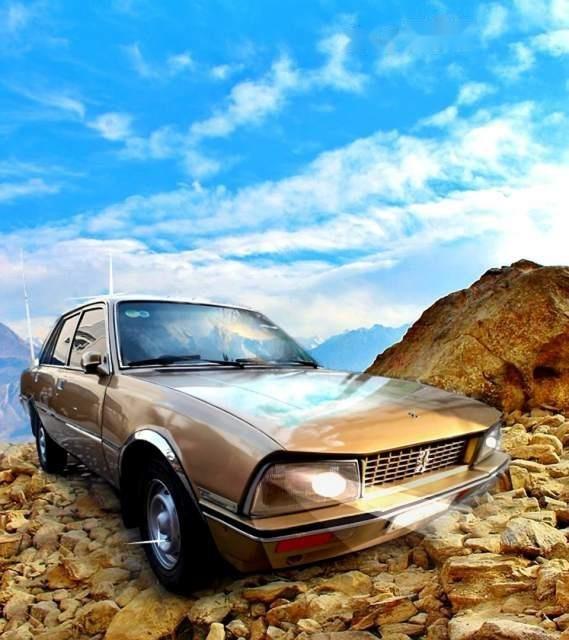 Cần bán gấp Peugeot 505 sản xuất 1990, nhập khẩu nguyên chiếc xe gia đình, 40 triệu-3