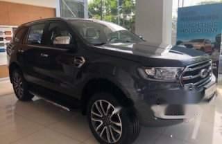Bán Ford Everest 2.0L Single Turbo Ambiente MT năm 2019, nhập khẩu nguyên chiếc, mới 100%-1