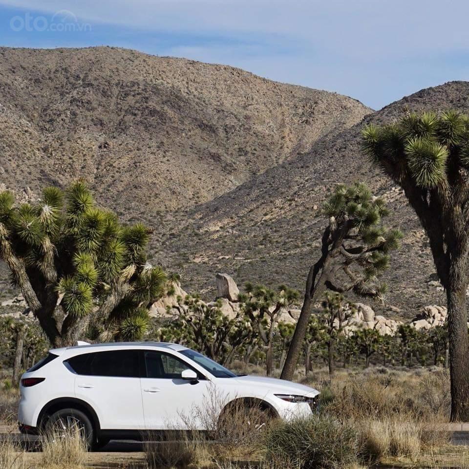 Mazda CX5 2.0 hỗ trợ 50 triệu tiền mặt, giao xe ngay trong 3 ngày, hỗ trợ vay vốn 80%. Lh 0908 360 146 Toàn Mazda-1
