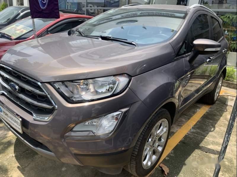 Bán ô tô Ford EcoSport đời 2018, màu xám (2)