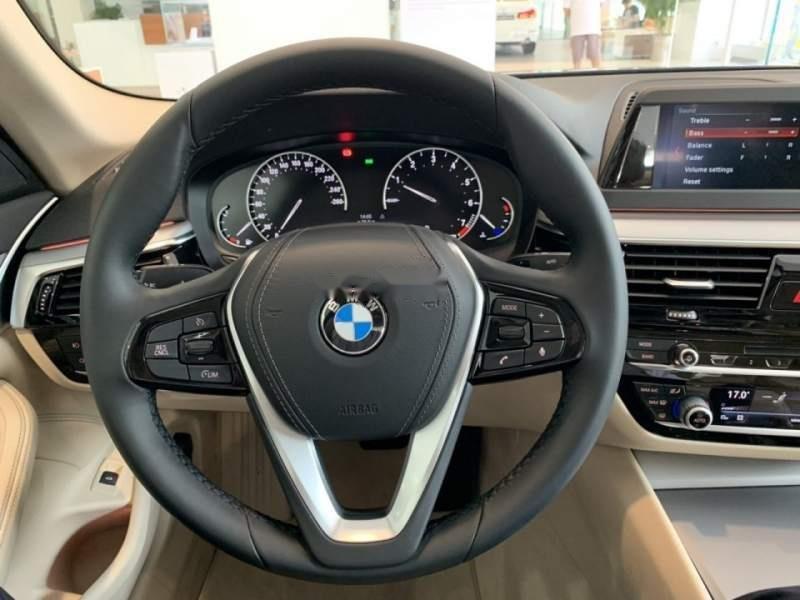 Cần bán xe BMW 5 Series 520i đời 2018, nhập khẩu-2