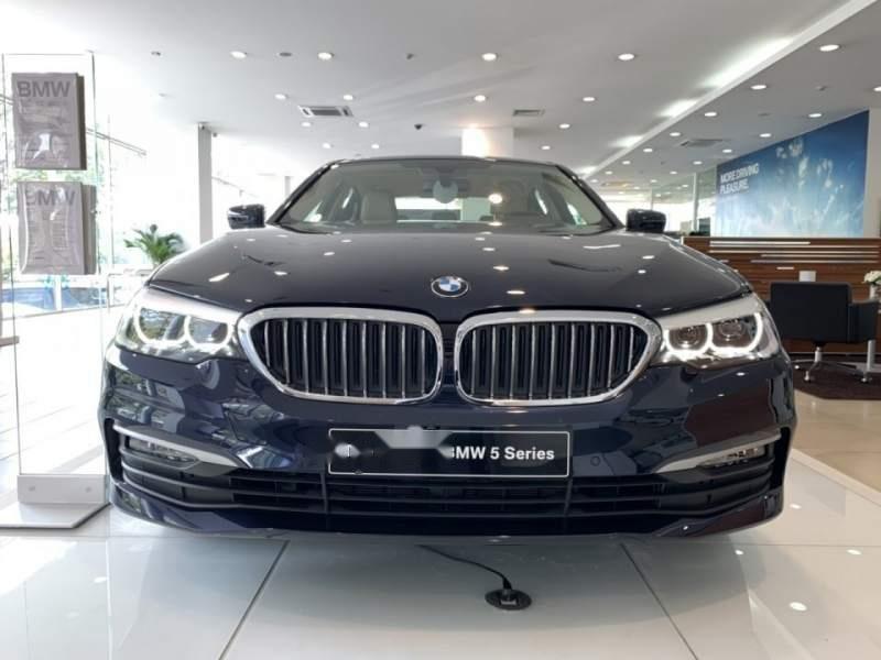 Cần bán xe BMW 5 Series 520i đời 2018, nhập khẩu-0