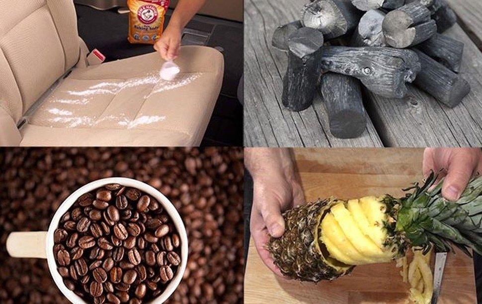 Đánh bay mùi hôi khó chịu trên xe bằng tinh dầu, hạt cà phê, dứa tươi.