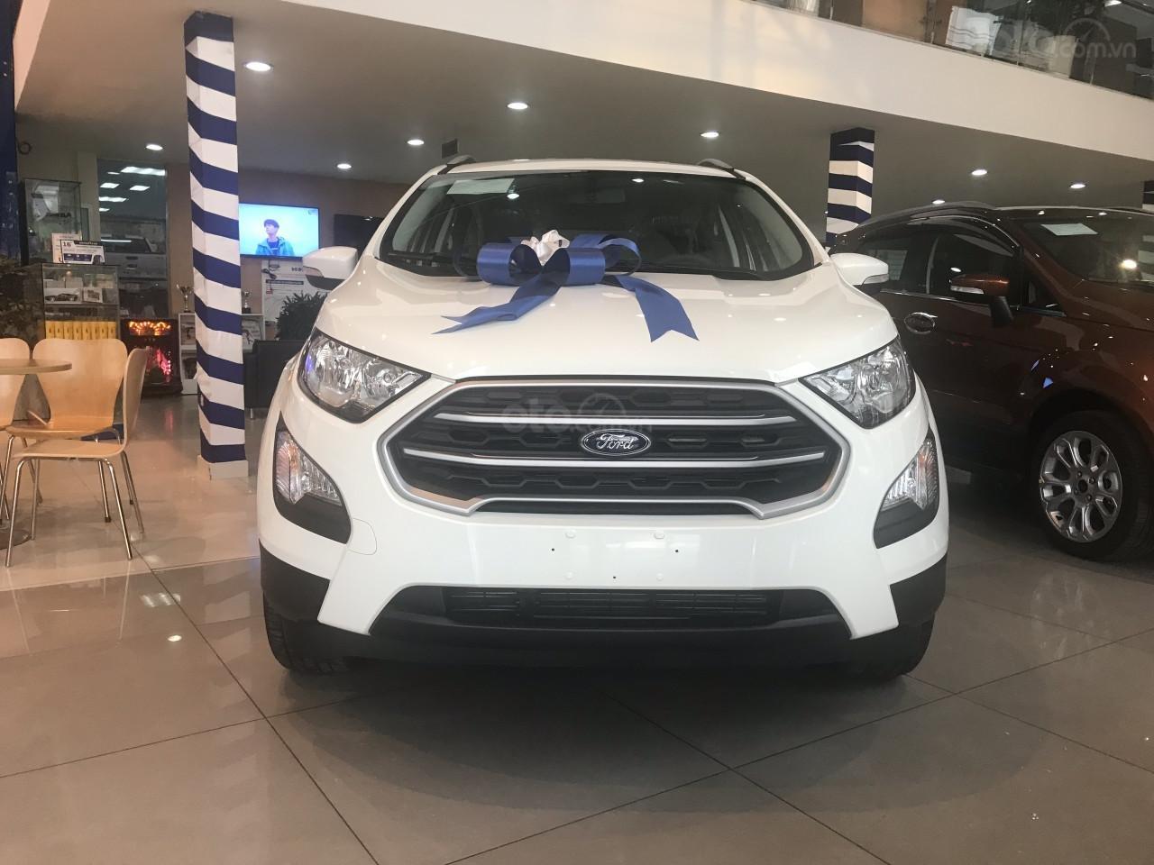 Bán xe Ford Ecosport 2019 - Mua xe tặng xe và hàng ngàn phần quà khác (1)