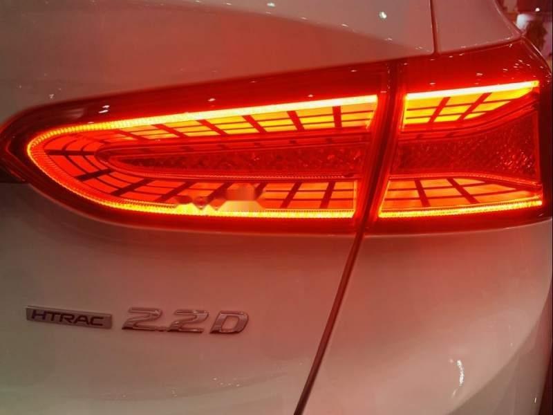 Bán Hyundai Santa Fe đời 2019, màu trắng, xe nhập-1
