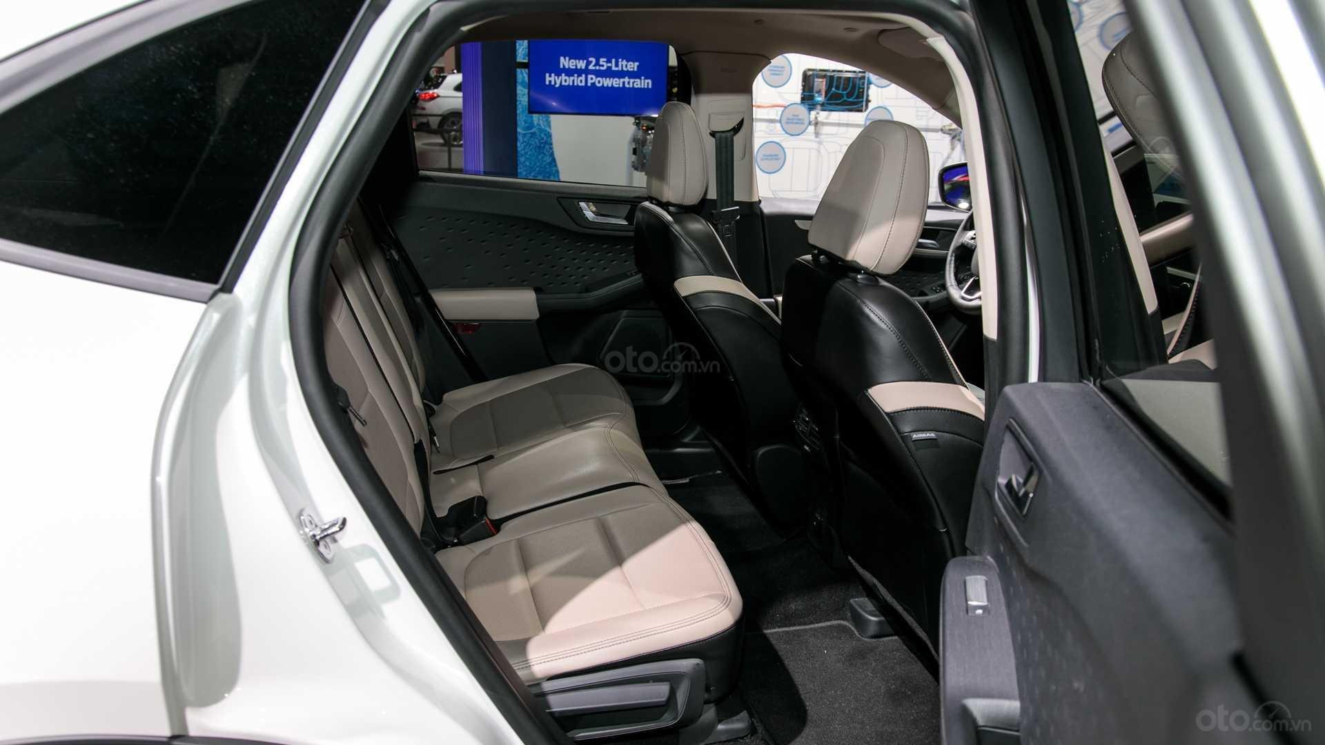 Đánh giá xe Ford Escape 2020 về hệ thống ghế ngồi 1