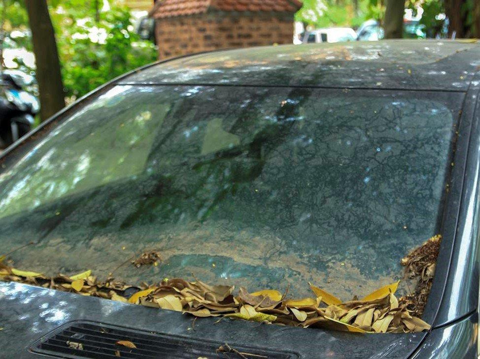 Số phận của chiếc Mercedes-Benz S63 AMG 2011 bị bỏ hoang tại Hà Nội a10