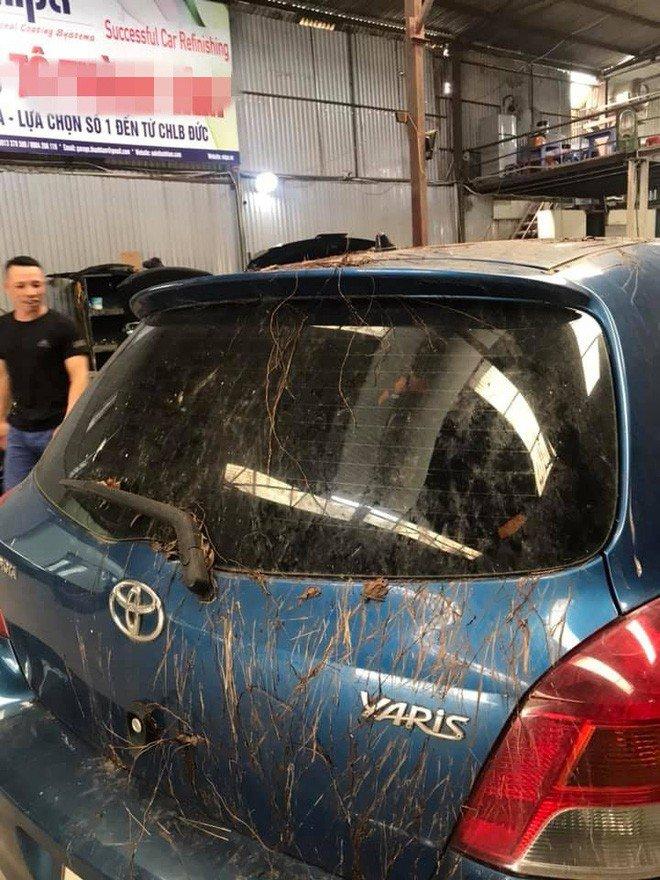 Toyota Yaris mọc đầy rễ cây như trong phim kinh dị 4a