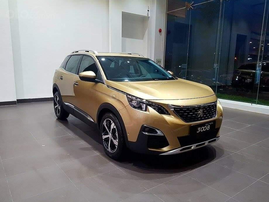 Cần bán xe Peugeot 3008 sản xuất 2019 (1)