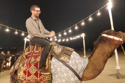Luật cấm cưỡilạc đà ở Nevada.