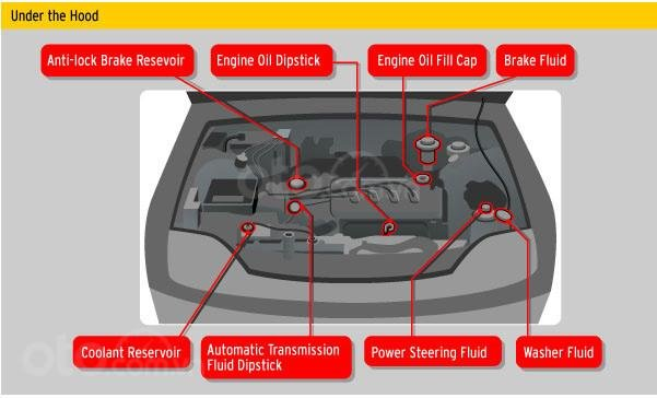 10 điều nên tuân thủ khi ô tô bị ngập nước - Kiểm tra các loại dung dịch trên xe